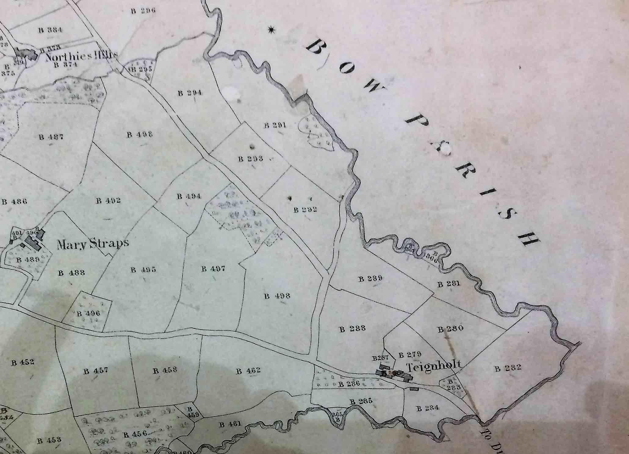 Teignholt on the tithe map
