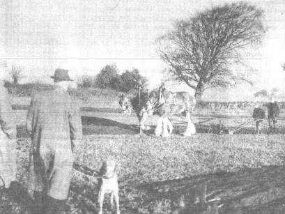 Edwin Scott ploughing, followed by George Jenkins