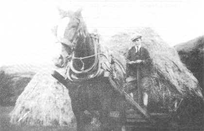 Davy Lynn driving a hay bogey