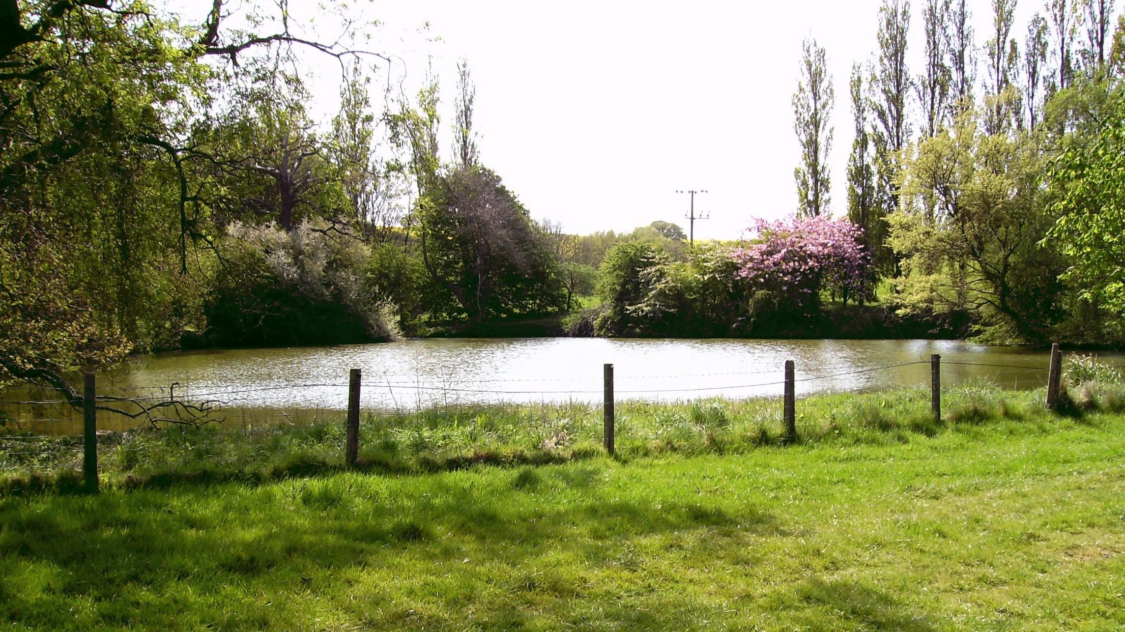 Cadeby Hall lake