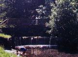 Horse Shoe Falls in Calderglen Park