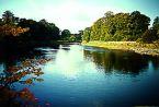 [River Tweed]